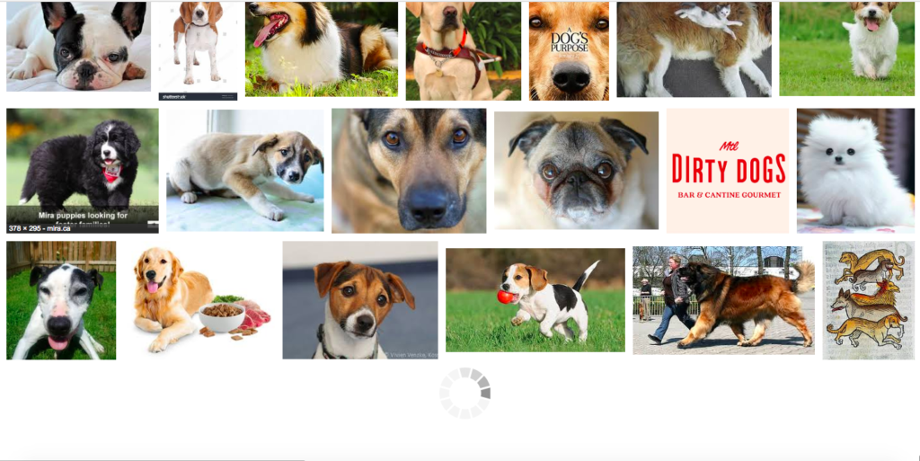 Screenshot of Google Images loading