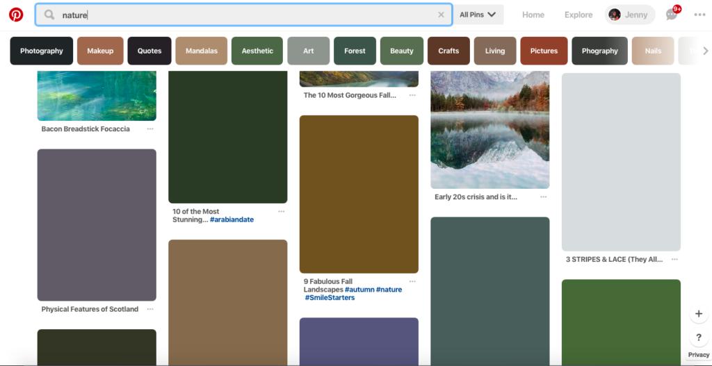Screenshot of Pinterest images loading
