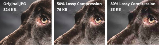 Series of images showing result of lossy compression